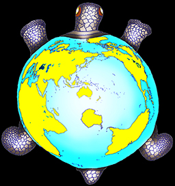 Turtle map projection- low res